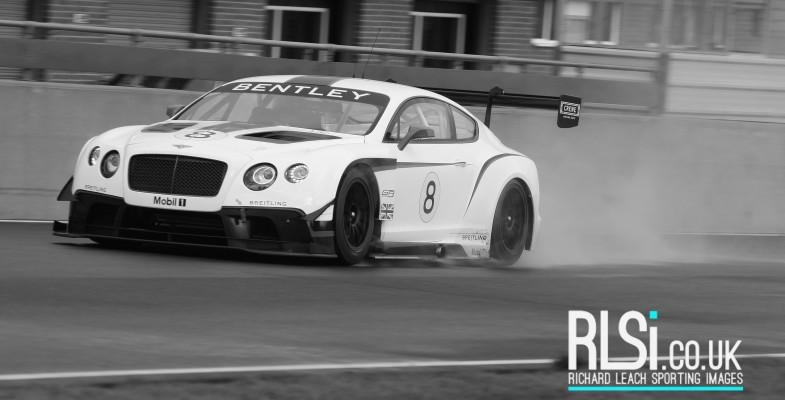 Bentley (71)